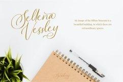 Swadery - Luxury Font Product Image 3