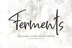 Ferments // Handwritten Scripts Product Image 1