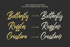 Questario - Stylish Script Font Product Image 5