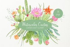 Watercolor clipart cactus for instant download  Product Image 1