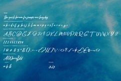 Deglas | Modern Script Font Product Image 6