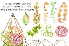 Succulents terrarium creator Vol.1 Product Image 2