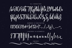 Scratches calligraphic font Product Image 4
