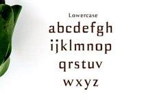 Birtle Serif Font Family Product Image 3