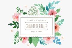 Brulee Font Product Image 5