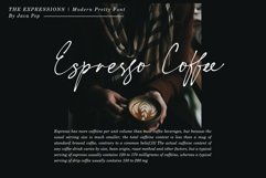 The Expressions / modern pretty font Product Image 6