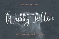 Wubby Kitten Product Image 1