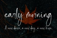 Inkgasm | Casual Script Font Product Image 3
