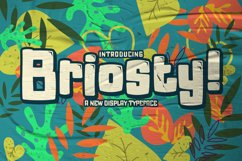 Briosty Product Image 1