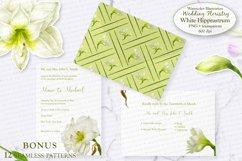White Hippeastrum. Base Elements for Wedding Floristry. Product Image 5
