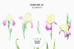 Irises. Watercolor Floral Set. Part2 Product Image 6
