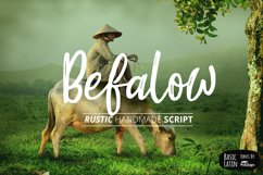 Befalow Rustic Font Product Image 1