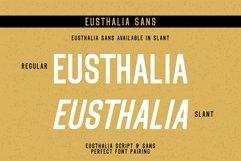 Eusthalia Font Family Product Image 3