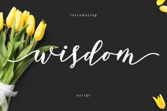 Web Font Wisdom Script Product Image 1