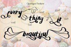 Summer Clam Stunning Font Product Image 4