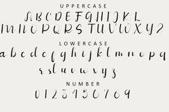 Vegetables - Script Calligraphy Font Product Image 2