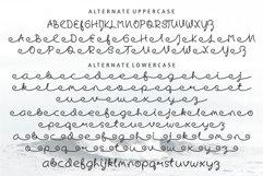 Skywave Typeface Product Image 6