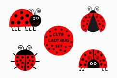 Ladybug Ladybird icon set. Vector illustration Product Image 1