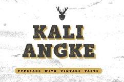Authentic Vintage Font Bundle Product Image 3