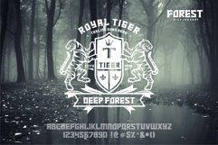 FOREST display font Product Image 4