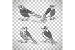 Birds with doodle decoration Product Image 1