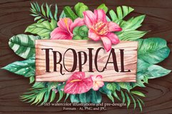 Tropical. Watercolor illustrations. Product Image 1