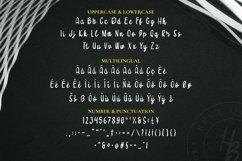 Web Font Scivicaa Font Product Image 4