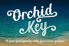 Orchid Key - a four-font family with alternates galore! Product Image 1