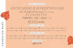 Zallenya   Handwritten Script Font Product Image 5