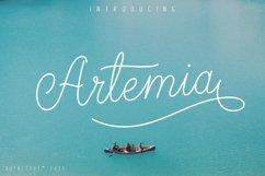 Artemia Script Product Image 1