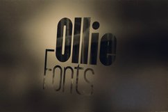 Ollie Typeface Product Image 2