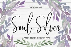 Soul Silver Product Image 1
