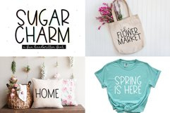 Spring Font Bundle - Fonts for Crafters Product Image 4