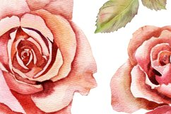 Pink Blush Watercolor Floral Clipart Separate Elements PNG Product Image 4