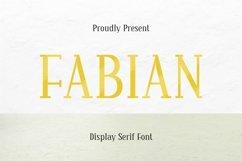 Web Font Fabian Font Product Image 1