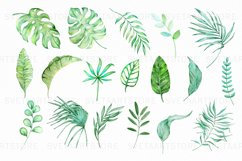 Tropical Watercolor Clipart Set Product Image 3