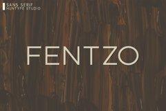 Fentzo Product Image 1