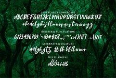 Web Font Deangelo - Brush Script Font Product Image 6