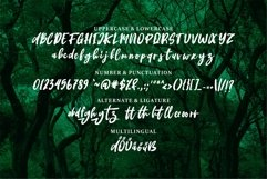Deangelo - Brush Script Font Product Image 6