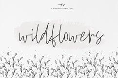 Wildflowers - A Handwritten Script Font Product Image 1