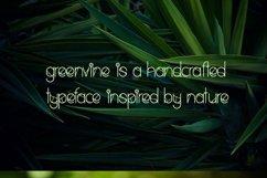 Greenvine Display Font Product Image 2