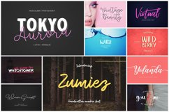 UPDATED 230 INSANE FONT SALE Product Image 16