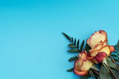Yellow roses on blue background. Product Image 1