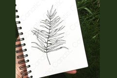 Palm leaf. Hand-drawn sketch and seamless patterns with it. Product Image 3