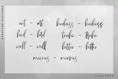 Andaretta - Brush Font Product Image 3