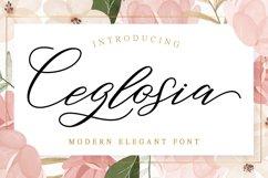 Ceglosia Product Image 1