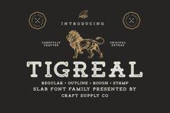 Tigreal Font Family BONUS Illustrations Product Image 1