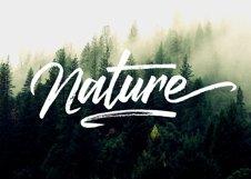 Marqhuis Brush font Product Image 4