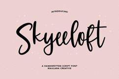 Skyeeloft Handwritten Script Font Product Image 1