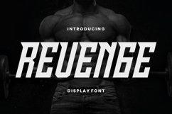 Web Font Revenge Font Product Image 1